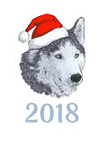 New Year 2018 congratulation card. Husky dog in Santa claus hat. Portrait Engraving colorful hand drawing image isolated on white background.