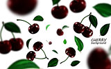 Falling black cherries elements, realistic cherry background on white in 3d illustration