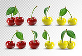 Cherry realistic fruit vector icons set. Vector illustration on transparent background