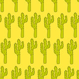 Vector seamless pattern with cactuses - design print, poster, card, textile