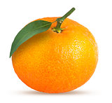 Whole tangerine or mandarin fruit isolated