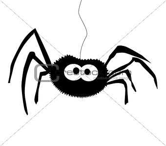 Black silhouette of spider isolated white background . Icon, cli