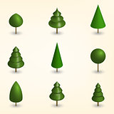 Green trees in 3D, vector illustration.