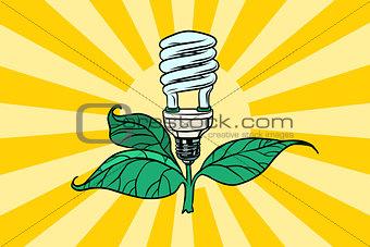 green lamp environment and alternative energy