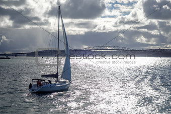 Auckland bridge view from the sea and sailing ship, New Zealand