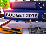 Office Folder with Inscription Budget 2018.