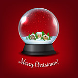 Winter Snow Globe With Red Background
