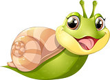 snail with mobil home