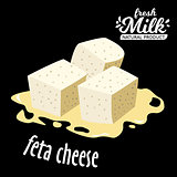 vector diced feta cheese icon isolated on black background