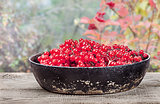 Viburnum in a pan on wooden table