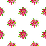 Christmas watercolor pattern with red flowers
