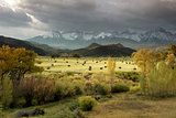 Autumn colors of Fall view of hay bales and trees in fields with San Juan Mountain range of Dallas Divide just outside of Ridgway Colorado America