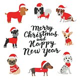 Greeting card. Merry Christmas and Happy new year. Dogs in costumes Santa Claus