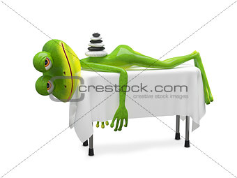 3D Illustration Frog on SPA Procedure