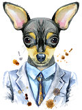 Watercolor portrait of toy terrier in a suit