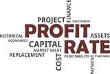 word cloud - profit rate