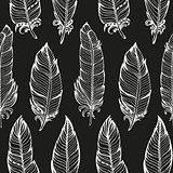 Seamless pattern. Hand drawn bird feathers. Vector illustration