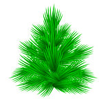 Lush fir tree Isolated on white vector illustration.
