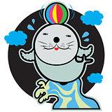 seal or phoca