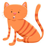 domestic cat cartoon animal character