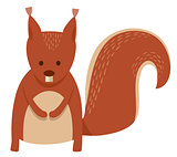 cute squirrel cartoon animal character
