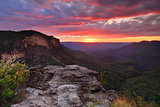 Views over the Jamison Valley Blue Mountains Australia