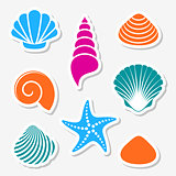 Vector sea shells and starfish labels