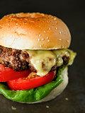 rustic american hamburger