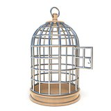 Empty bird cage opened 3D