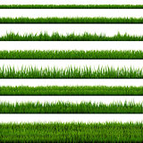 Grass Border Collection