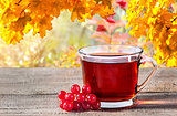 Cup of black tea with viburnum berries