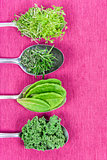 Vitamins - various herbs on spoons