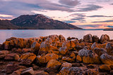 Coles Bay in Freycinet National Park