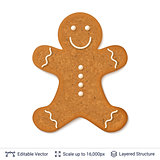 Gingerbread cookie man isolated on white.