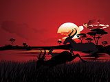 Sunset Landscape with Antelopes