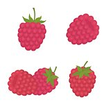 sweet berry a raspberry