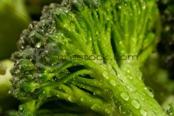 broccoli water