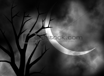 A Moonlit night illustration