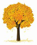 vector silhouette of autumn season yellow tree