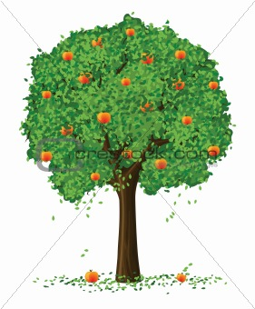 vector silhouette of apple tree with fruits