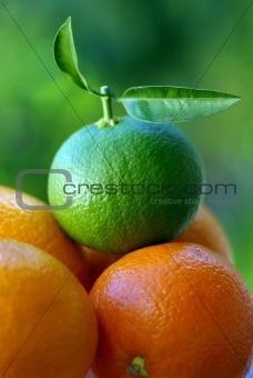 Green orange .