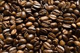 coffee beans-01