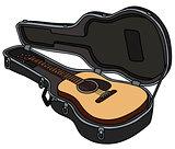 The guitar in a hard guitar case