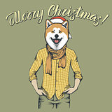 Dog Christmas vector illustration