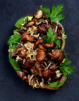 Crostini with Mushrooms Chanterelles