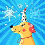 New Year card funny dog