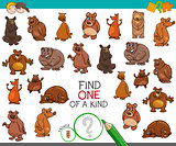 find one of a kind with bear animal characters