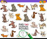 find identical cartoon pictures of dogs game
