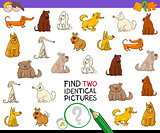 find two identical pictures activity with dogs