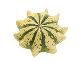 Cream and green striped ornamental gourd, Crown of Thorns